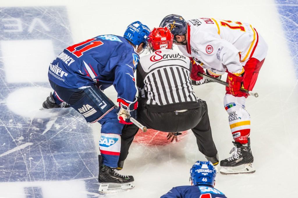Feature , Adler Mannheim vs. Duesseldorfer EG , DEL Eishockey Adler Mannheim 2015 / 2016, © Copyright: AS Sportfoto / Soerli Binder, www. as-sportfoto.de, MSP_2509_Adler, S.Binder Hauptstr. 143 69168 Wiesloch, as-sportfoto@hotmail.de / soerli@hotmail.de, USt.IdNr. DE240155184,